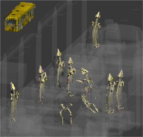 3D reconstructions of a controlled bus bombing - ScienceDirect