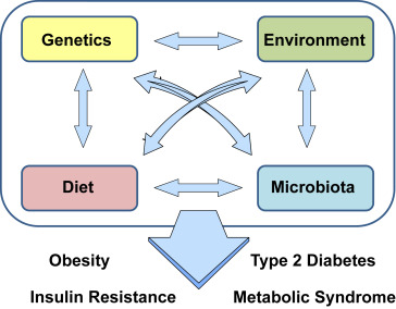 Interactions between host genetics and gut microbiome in diabetes and  metabolic syndrome - ScienceDirect
