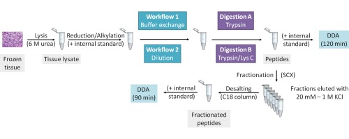 Workflow for large-scale analysis of melanoma tissue samples