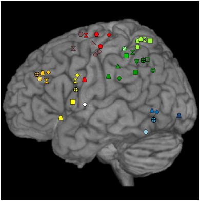 Apraxia, pantomime and the parietal cortex - ScienceDirect