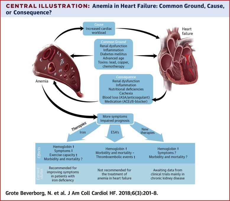 Anemia In Heart Failure Still Relevant Sciencedirect