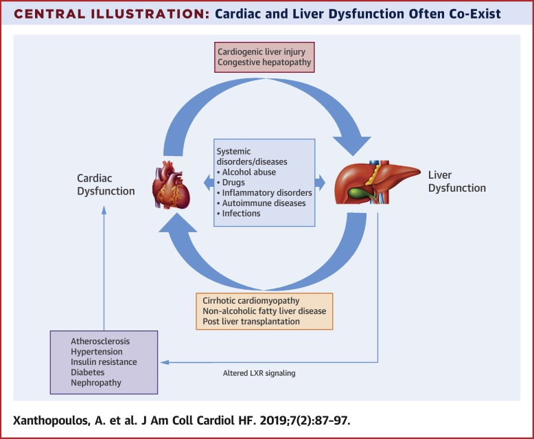 Heart Failure and Liver Disease: Cardiohepatic Interactions