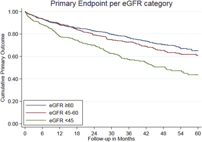 Efficacy And Safety Of Spironolactone In Patients With Hfpef And Chronic Kidney Disease Sciencedirect