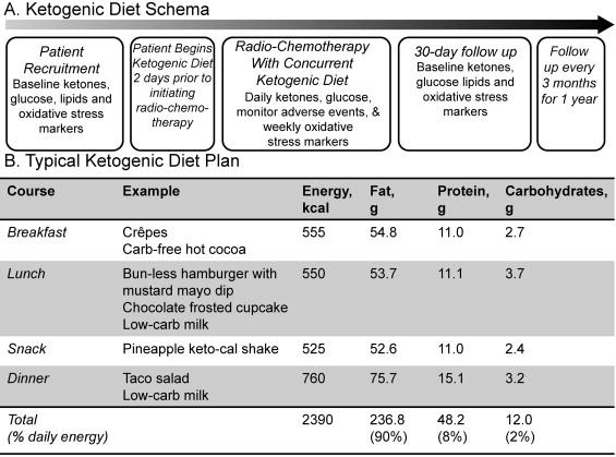 4 1 ketogenic diet