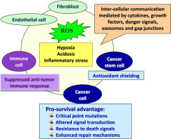 The redox biology network in cancer pathophysiology and