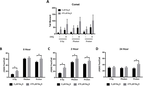 Sodium sulfide selectively induces oxidative stress, DNA damage, and