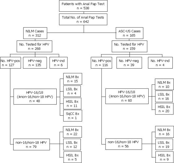human papillomavirus non 16 18)