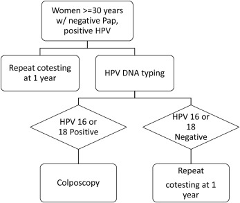 Cervical biopsy rates before and after the introduction of human  papillomavirus type reporting in co-tests with negative cytology -  ScienceDirect