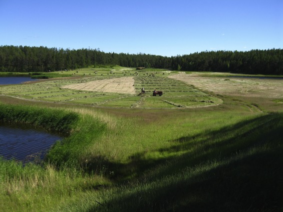 Review Permafrost livelihoods: A transdisciplinary review and analysis of thermokarst-based systems of indigenous land use