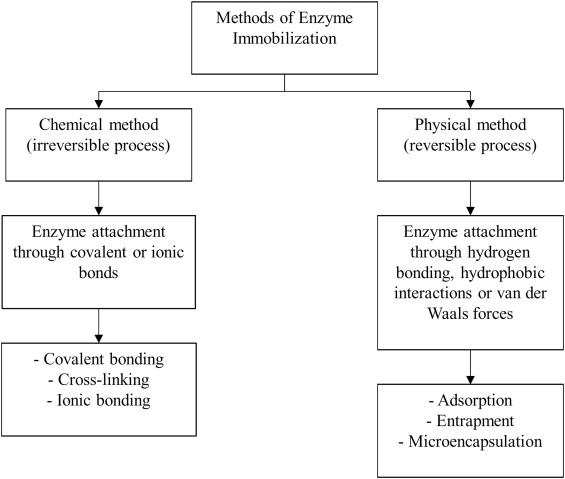 Efficiency of various recent wastewater dye removal methods: A