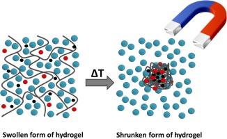 Water purification using sponge like behaviour of poly (N
