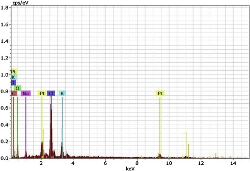 Green synthesis derived Pt-nanoparticles using Xanthium