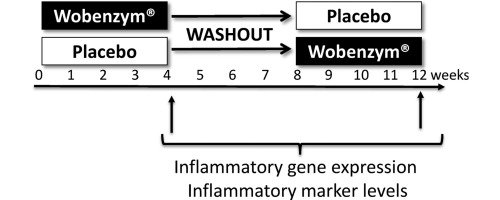 Impact Of Systemic Enzyme Supplementation On Low Grade Inflammation