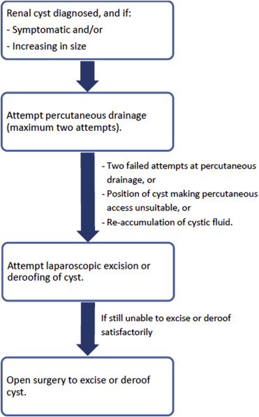 The management of symptomatic simple renal cysts in children - ScienceDirectScienceDirect.com