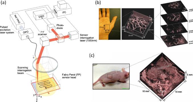 Laser Schematic Diagram Fp  Laser Block Diagram, Simple