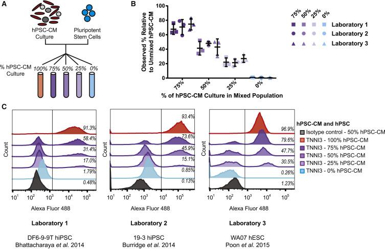 Are These Cardiomyocytes? Protocol Development Reveals