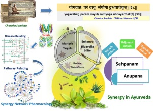 Exploring Synergy In Ayurveda And Traditional Indian Systems Of Medicine Sciencedirect