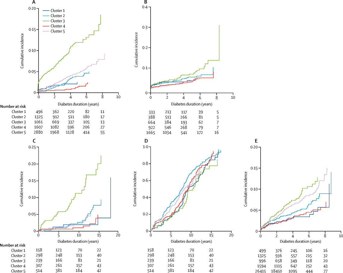 Novel subgroups of adult-onset diabetes and their ...