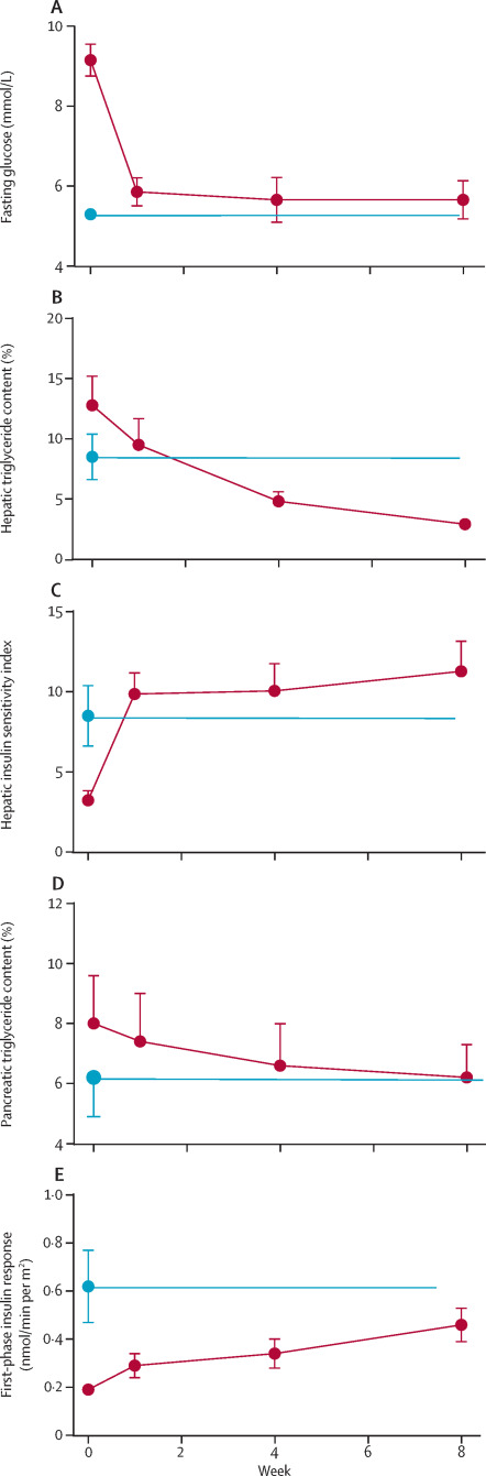 Understanding the mechanisms of reversal of type 2 diabetes
