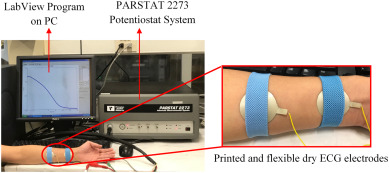 Development of printed and flexible dry ECG electrodes
