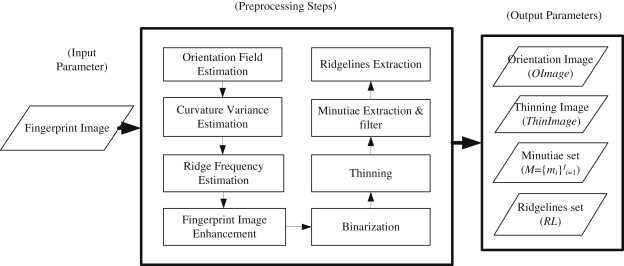 An improved ridge features extraction algorithm for