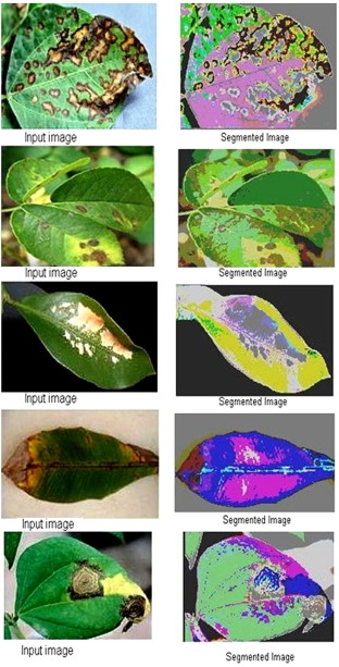 Detection of plant leaf diseases using image segmentation