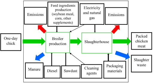 Environmental impact assessment of chicken meat production