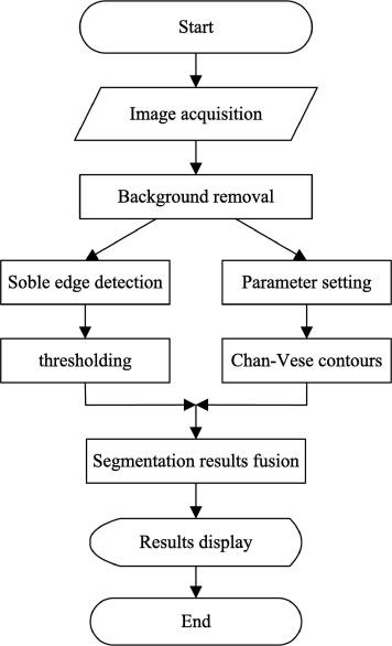 Image segmentation of overlapping leaves based on Chan–Vese