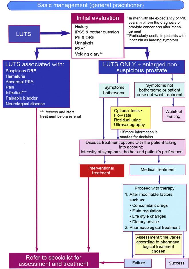 benign prostatic hypertrophy definition healthcare