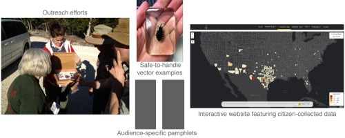 Contributions of citizen scientists to arthropod vector data in the