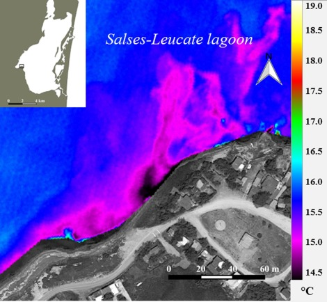 Combining airborne thermal infrared images and radium isotopes to