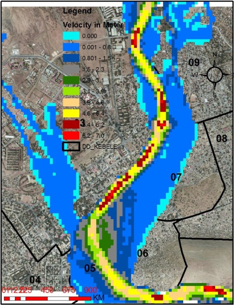 Flood hazard mapping using FLO-2D and local management