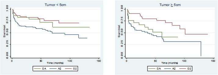 Survival patterns of oligoastrocytoma patients: A surveillance
