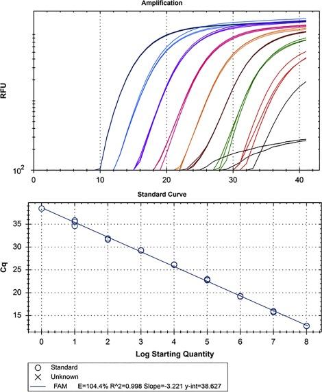 qPCR primer design revisited - ScienceDirect