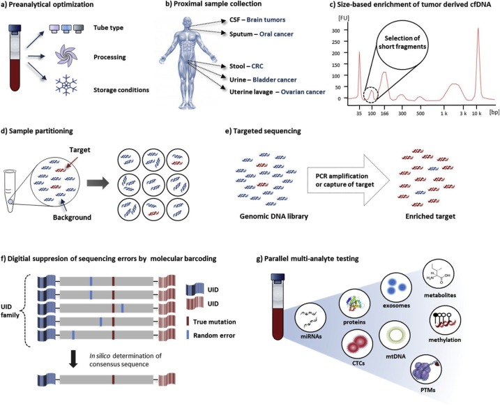 The emerging role of cell-free DNA as a molecular marker for