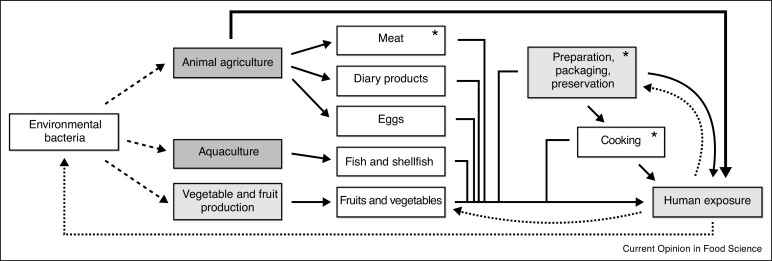 Antibiotic Resistance In The Food Supply Chain Where Can Sequencing