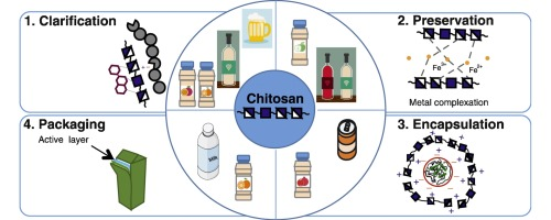 Applications of chitosan and their derivatives in beverages