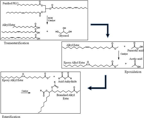 Chemically modified palm kernel oil ester: A possible