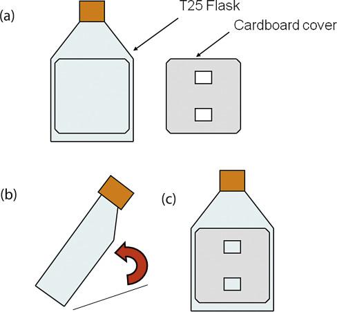 Non-invasive and non-destructive measurements of confluence in