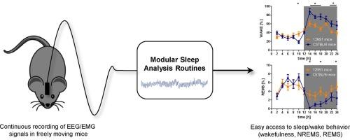 Sleep scoring made easy—Semi-automated sleep analysis