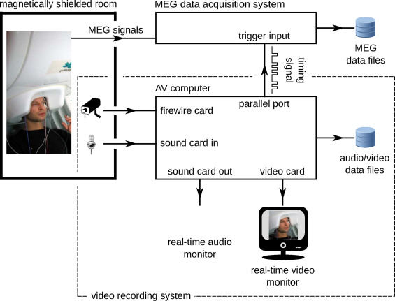 Helsinki VideoMEG Project: Augmenting magnetoencephalography with