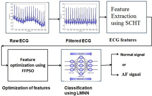 ECG based Atrial Fibrillation detection using Sequency Ordered
