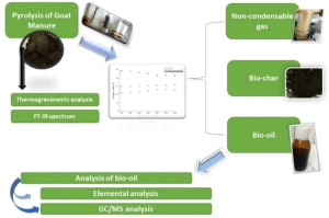 Pyrolysis of goat manure to produce bio-oil - ScienceDirect