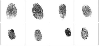 Anti-spoofing method for fingerprint recognition using patch based
