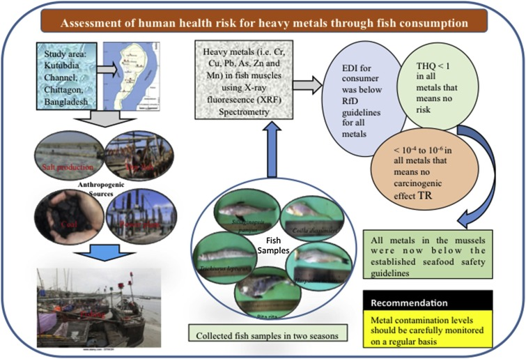 Assessment of heavy metals contamination in selected