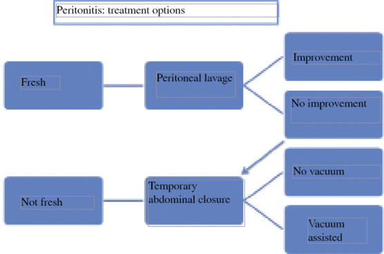 The Research Progress Of Acute Small Bowel Perforation Sciencedirect