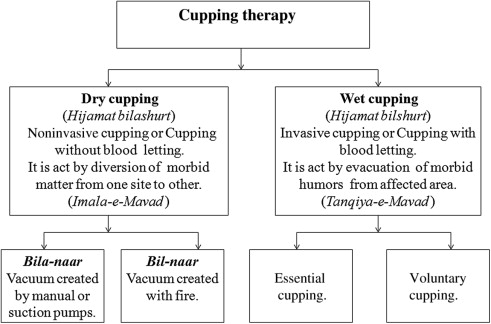 Cupping therapy: A prudent remedy for a plethora of medical ...