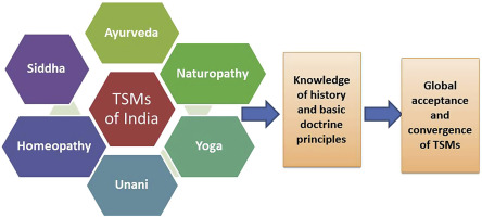 A glimpse of Ayurveda – The forgotten history and principles of