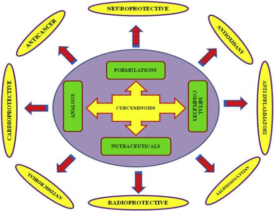 Biological activities of curcuminoids, other biomolecules