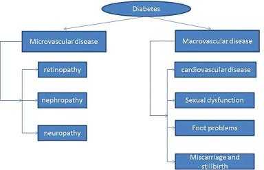 Type 1 Diabetes Cardiovascular Complications And Sesame 芝麻 Zhi